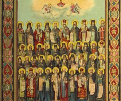 Собор всех преподобных отцов, в подвиге просиявших.