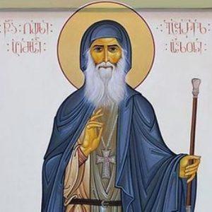 «СТРАННЫЕ ВЫ, ФИЛОЛОГИ» О новых чудесах старца Гавриила (Ургебадзе)