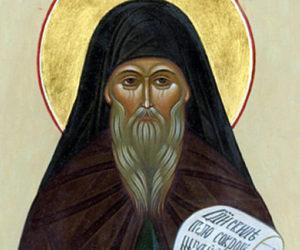 29 мая. Память преподобного Феодора Освященного.