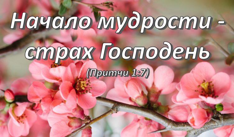 Поучение о том, что является началом мудрости. Святитель Николай Сербский.