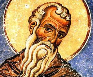 19 июня—день памяти преподобного Виссариона, чудотворца Египетского