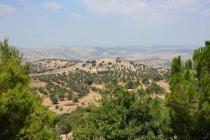 Тель-Мар-Ильяс: там, где родился пророк Илия. ФОТОГАЛЕРЕЯ