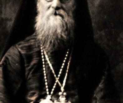 МИТРОПОЛИТ ИЛИЯ КРИЧАЛ БОГОРОДИЦЕ: «РУСЬ ПОГИБАЕТ! СПАСИ!» Рассказы протоиерея Владимира Тимакова