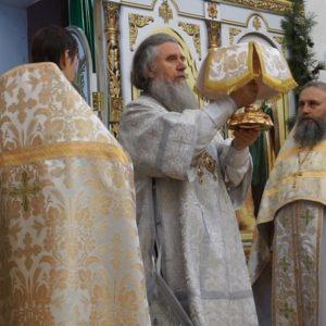13 января архиепископ Димитрий возглавил Божественную литургию в храме св.Ирины