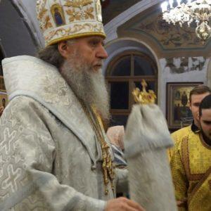 17 февраля, в Неделю о мытаре и фарисее, архиепископ Димитрий возглавил Божественную литургию в храме святой Ирины