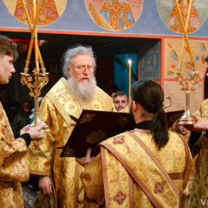 Архиепископ Димитрий возглавил всенощное бдение в храме святого великомученика Георгия Победоносца