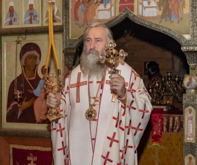Архиепископ Каширский Феогност назначен управляющим викариатством Новых территорий