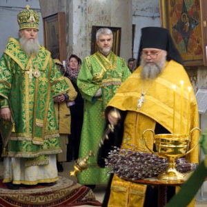 Архиепископ Витебский и Оршанский Димитрий возглавил богослужения в праздник Входа Господня в Иерусалим